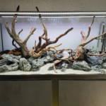 Hardscape Wurzel Groot Steine Stone Aquarium | Galerie Wasserwelten