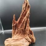 Hardscape Wurzel Aquarium Aquascaping | Galerie Wasserwelten