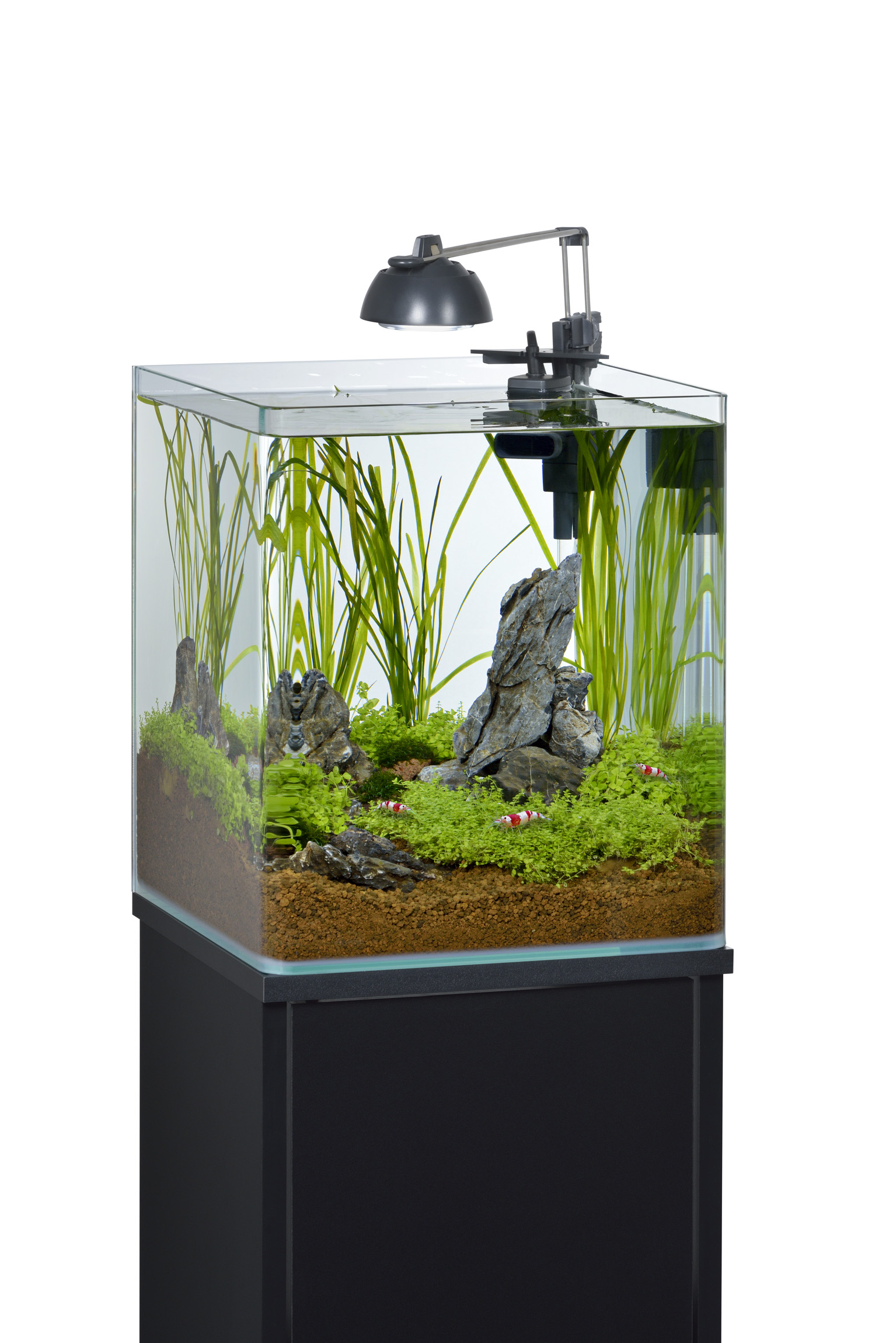 EHEIM nano shrimp | Galerie Wasserwelten