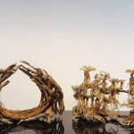 Wurzeln Aquascaping | Galerie Wasserwelten